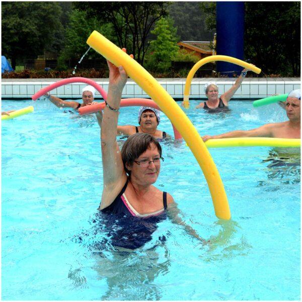 Aqua-Fitness (zur Rückenstärkung)